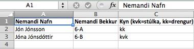Innflutningur á Excel lista